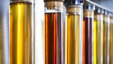 Photo of Pesquisadores australianos desenvolvem novo catalisador para biodiesel