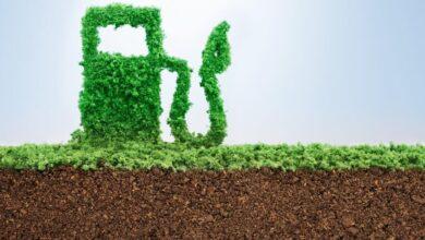 Photo of Petrobras refuta rota única para biodiesel e quer lançar 'diesel verde