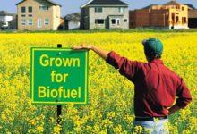 Photo of Biocombustíveis respondem por 17% do consumo de energias renováveis nos EUA em 2020