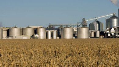 Photo of Alemanha espera aumento no consumo de biocombustíveis