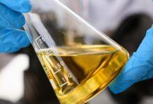 Photo of Nova lei do biodiesel na Argentina deve impactar preços globais do óleo de soja